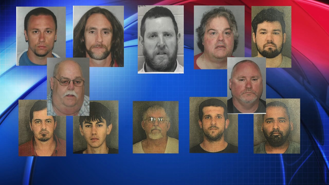 School bus driver, radio DJ among 12 charged in Capital Region sex sting