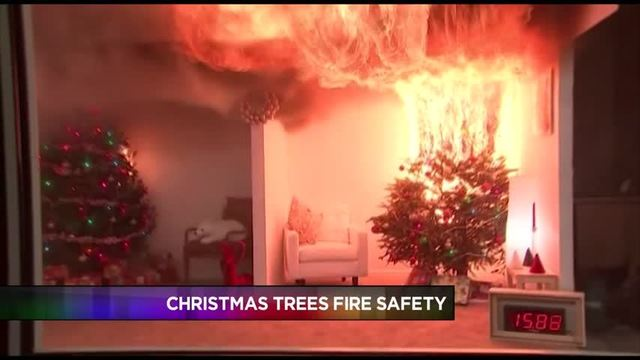 - Prevent Your Christmas Tree From Causing A Home Fire
