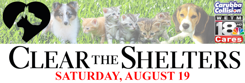 18cares_cleartheshelters_640x360
