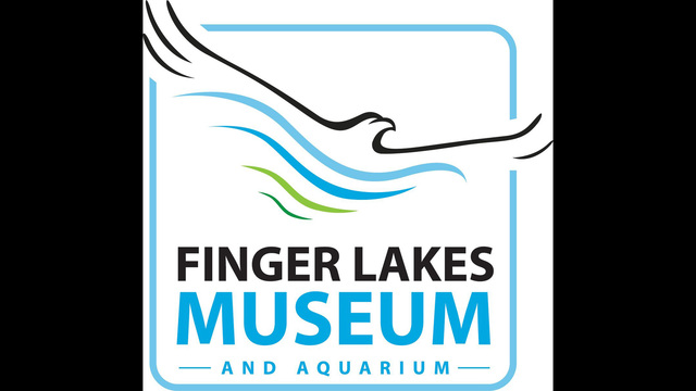 The Fingers Lakes Museum and Aquarium to host wildlife photography workshop