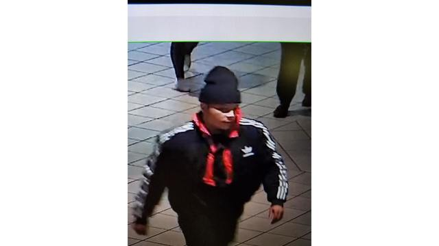 Person of interest in Arnot Mall larceny investigation