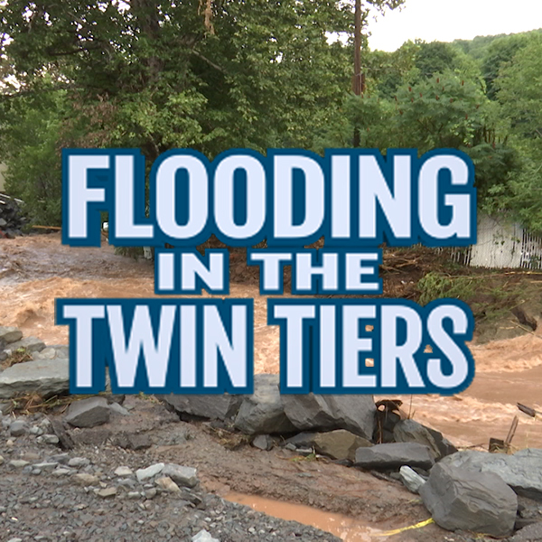 flooding in the twin tiers photo share button