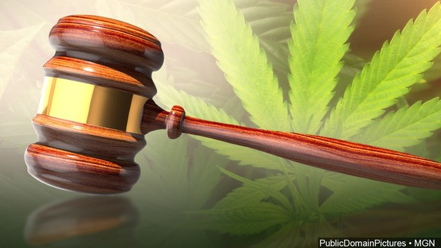 'Canna-Business' meeting focuses on possibilities of legal marijuana in NY